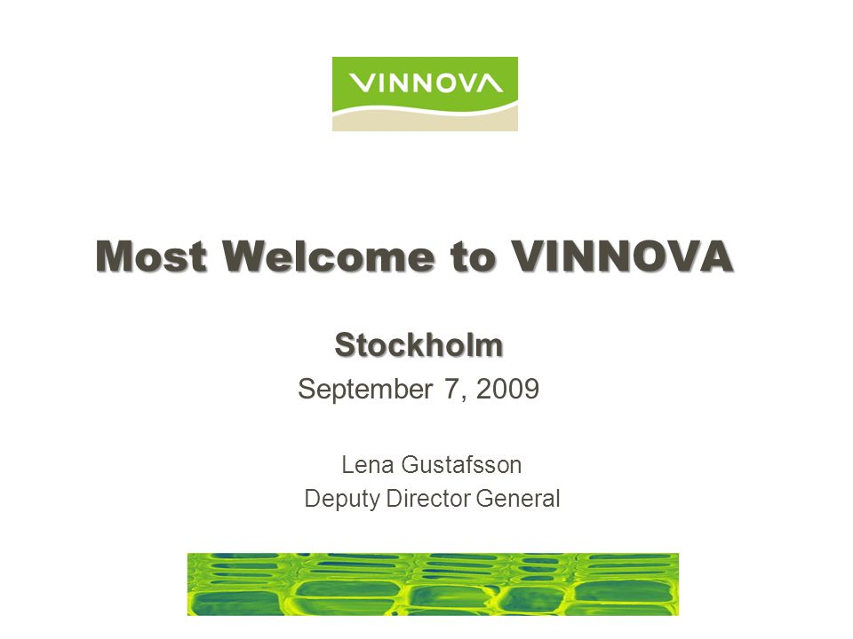 Most Welcome to VINNOVA Lena Gustafsson Deputy Director General Stockholm September 7, 2009