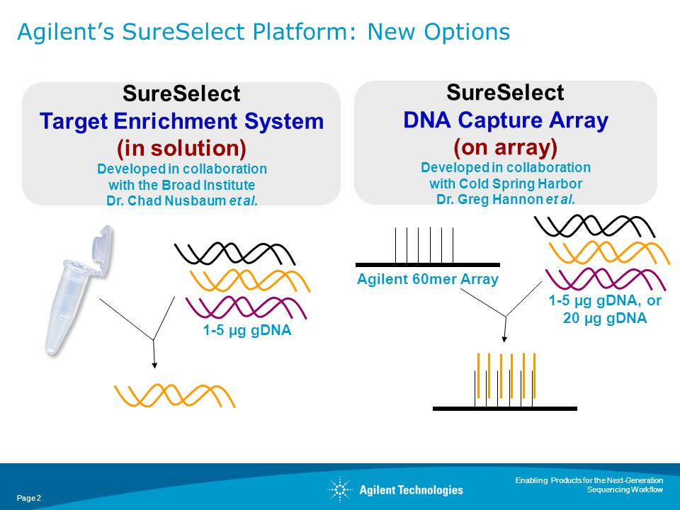 Enabling Products for the Next-Generation Sequencing Workflow Page 3 A Choice in Agilent Target Enrichment Options for Specific Project Needs SureSelect Target Enrichment System SureSelect DNA Capture Array (244k array) ThroughputHighLow Study Sizes10-1,000s samples1-10 samples DNA Input1-3 µg1-20 µg* Capture of Target DNA 3.3 + Mb Custom ~1 Mb Format Kit Array plus application note/protocol or