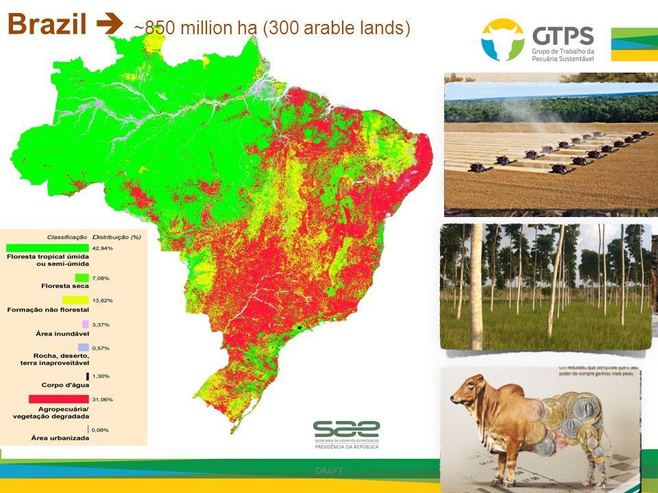 Brazil  ~850 million ha (300 arable lands)
