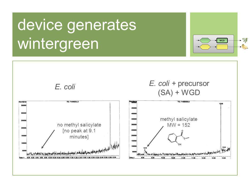 device generates wintergreen methyl salicylate MW = 152 no methyl salicylate [no peak at 9.1 minutes] E.