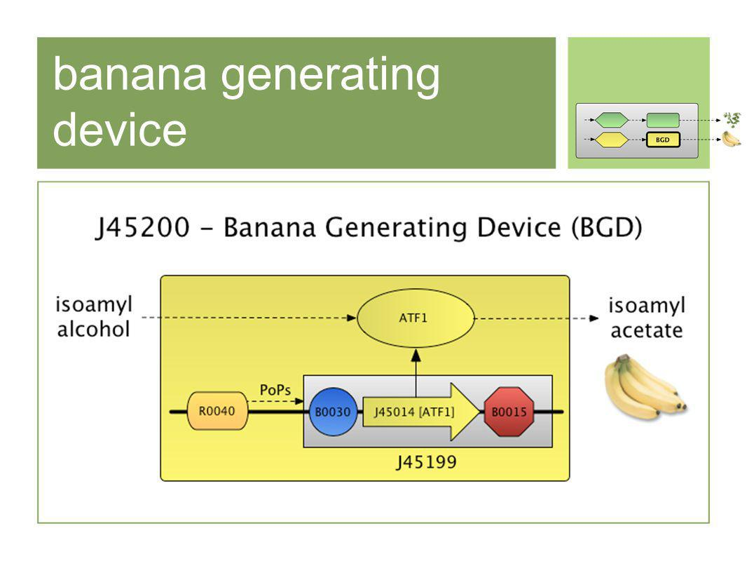 banana generating device