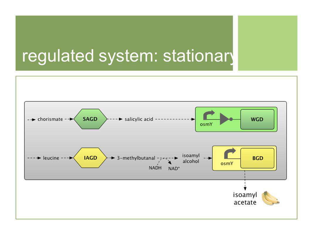 regulated system: stationary