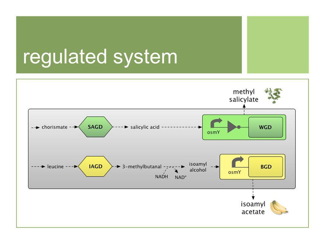 regulated system