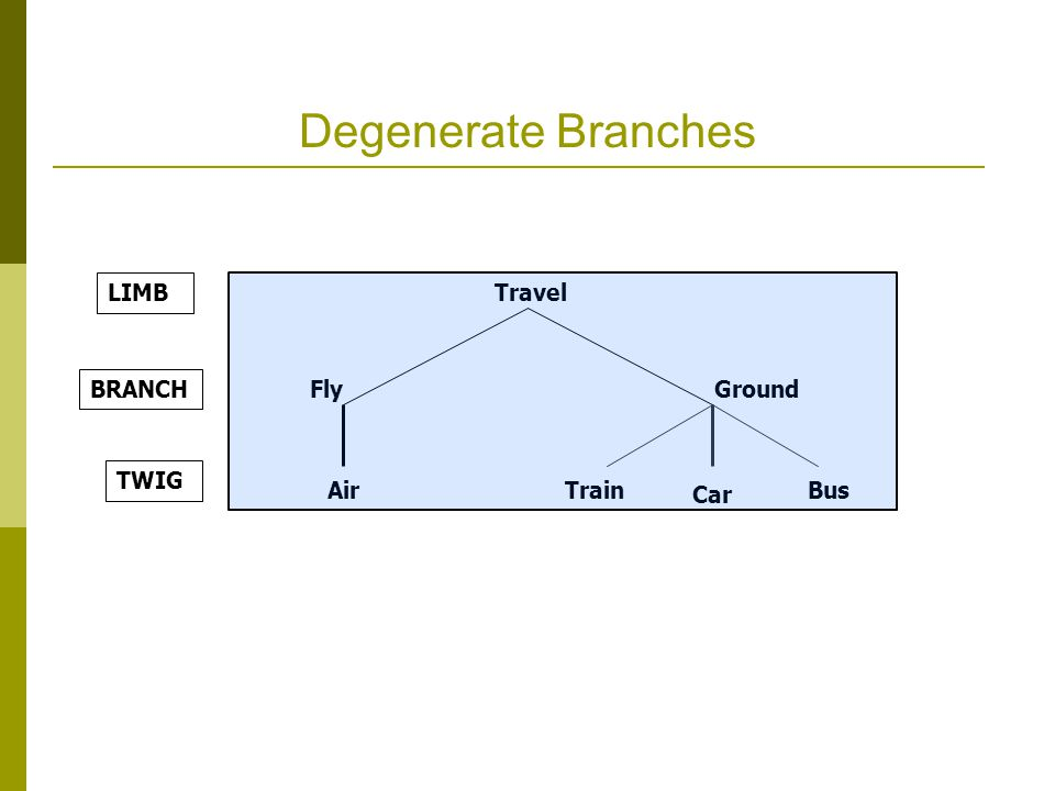 Degenerate Branches Travel FlyGround Air Car Train Bus BRANCH TWIG LIMB