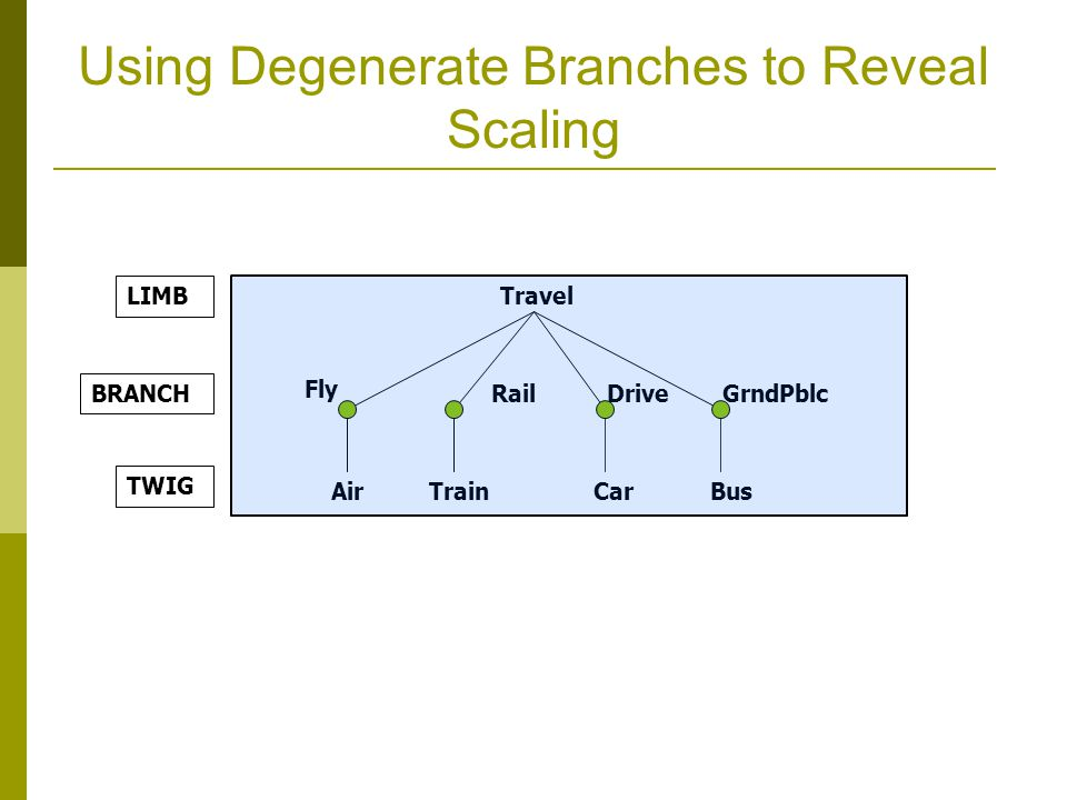 Using Degenerate Branches to Reveal Scaling Travel Fly Rail Air CarTrain Bus LIMB BRANCH TWIG DriveGrndPblc