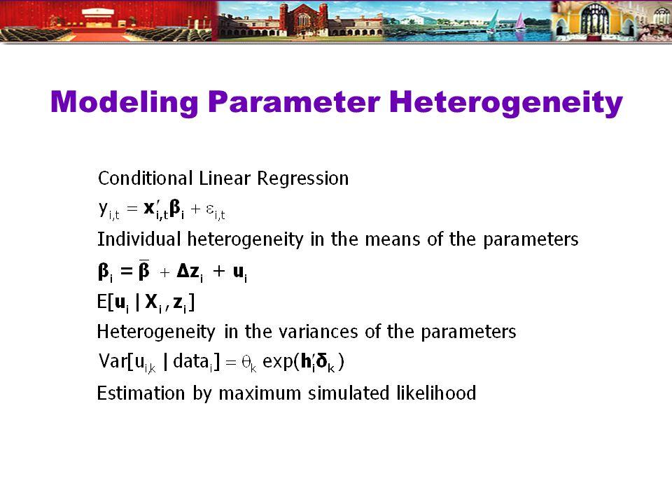 Modeling Parameter Heterogeneity