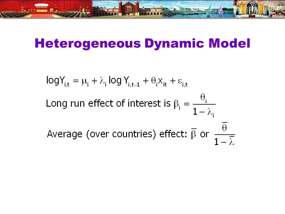 Heterogeneous Dynamic Model