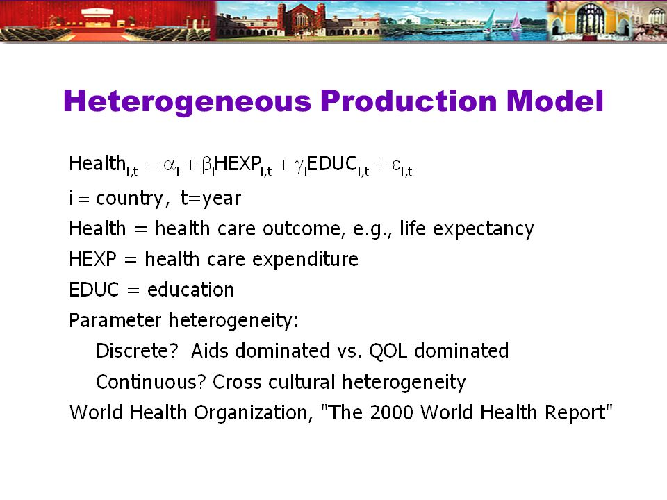 Heterogeneous Production Model