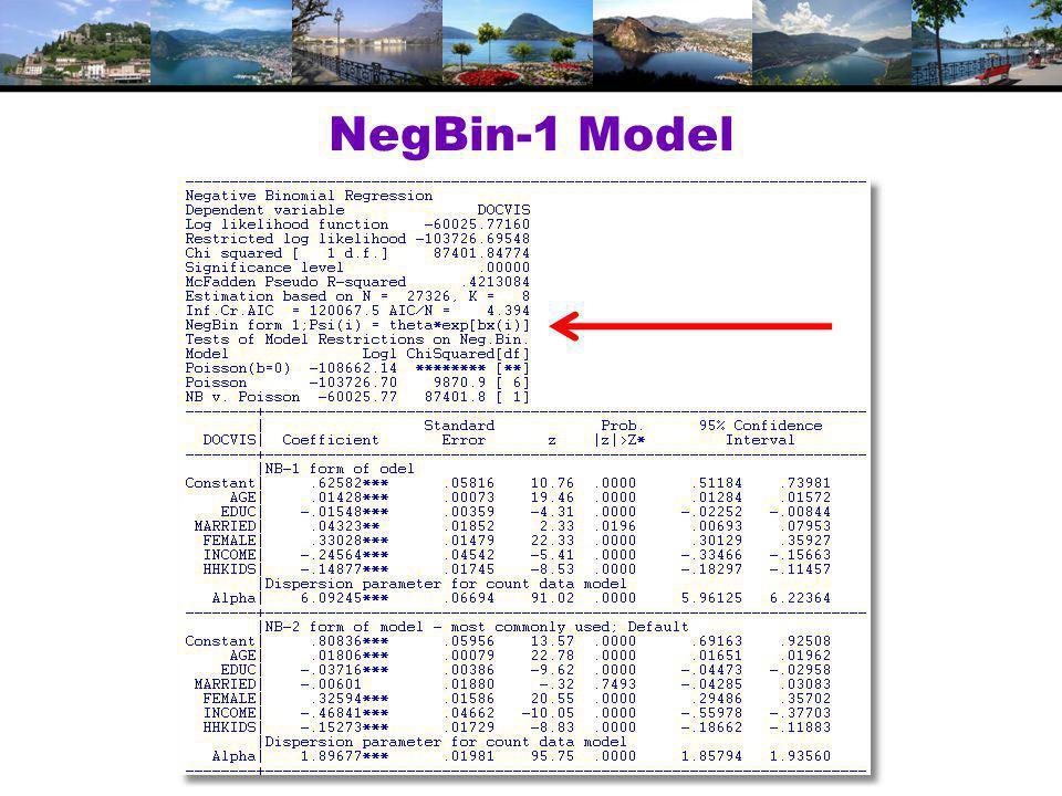 NegBin-1 Model