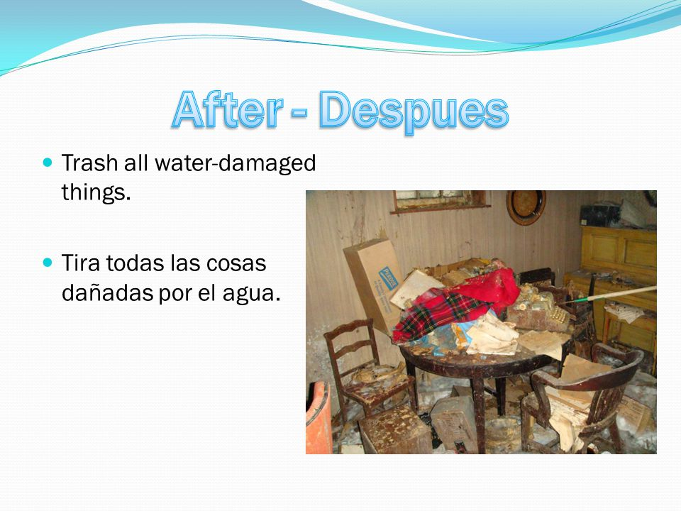 Trash all water-damaged things. Tira todas las cosas dañadas por el agua.