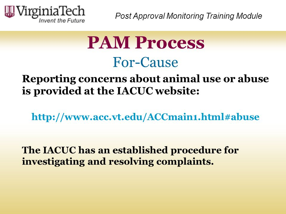 Reporting concerns about animal use or abuse is provided at the IACUC website: PAM Process Post Approval Monitoring Training Module http://www.acc.vt.
