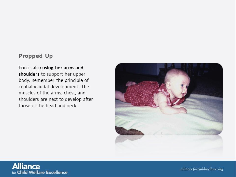 Erin is also using her arms and shoulders to support her upper body. Remember the principle of cephalocaudal development. The muscles of the arms, che