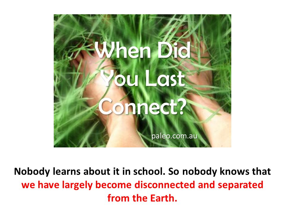 Nobody learns about it in school. So nobody knows that we have largely become disconnected and separated from the Earth.