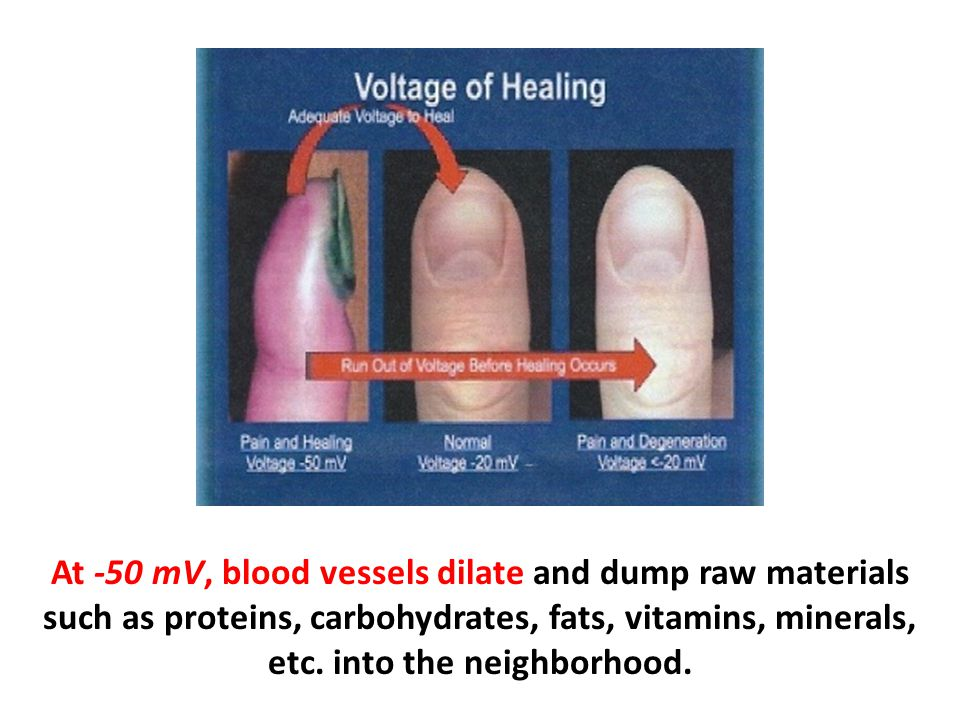 At -50 mV, blood vessels dilate and dump raw materials such as proteins, carbohydrates, fats, vitamins, minerals, etc. into the neighborhood.