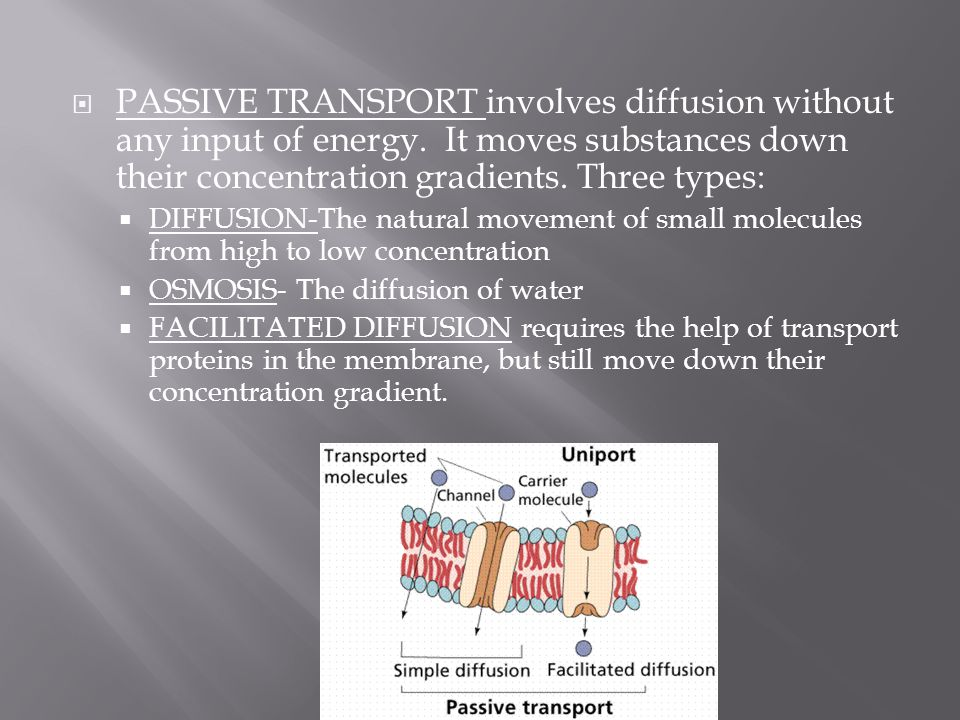  PASSIVE TRANSPORT involves diffusion without any input of energy. It moves substances down their concentration gradients. Three types:  DIFFUSION-T