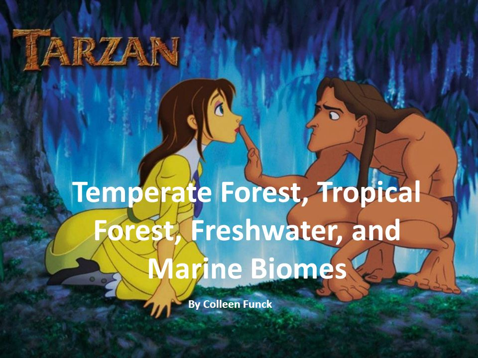 Temperate Forest, Tropical Forest, Freshwater, and Marine Biomes By Colleen Funck