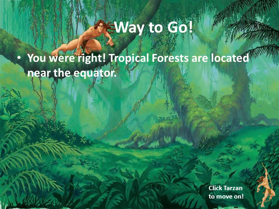 Way to Go! You were right! Tropical Forests are located near the equator. Click Tarzan to move on!
