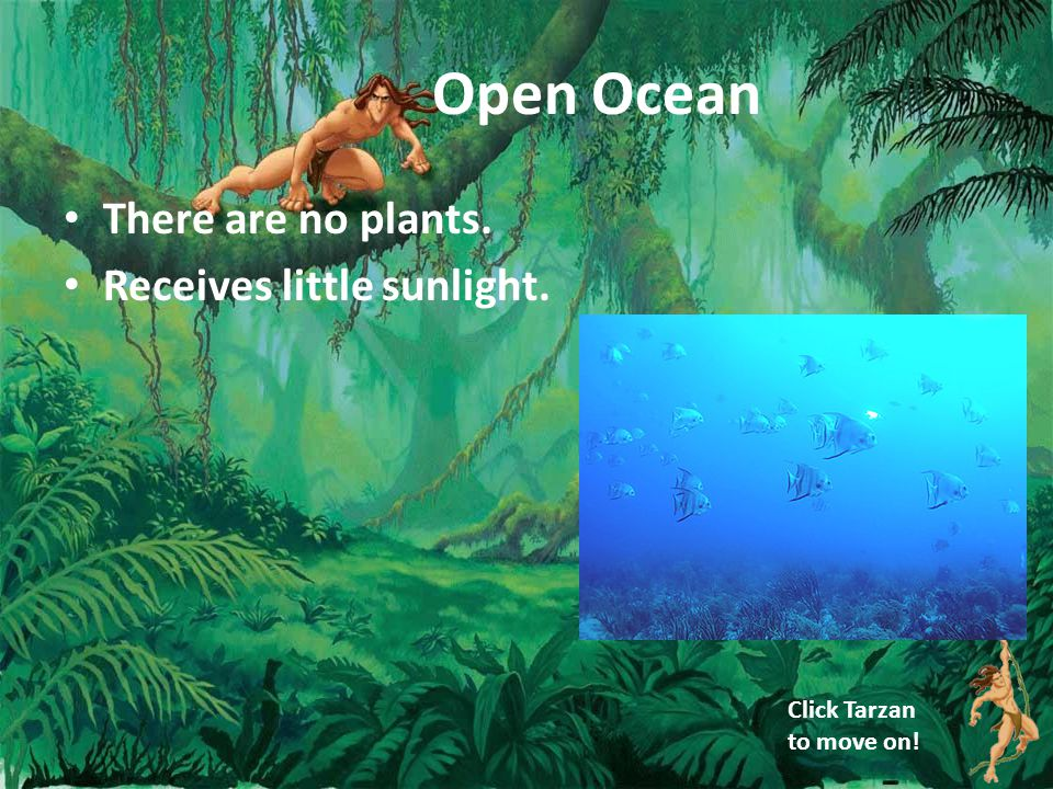 Open Ocean There are no plants. Receives little sunlight. Click Tarzan to move on!