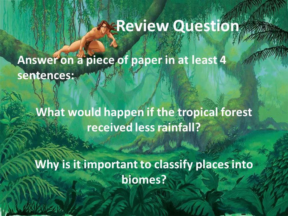 Review Question Answer on a piece of paper in at least 4 sentences: What would happen if the tropical forest received less rainfall.