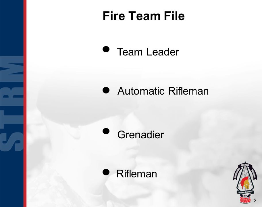 5 Rifleman Automatic Rifleman Grenadier Team Leader Fire Team File