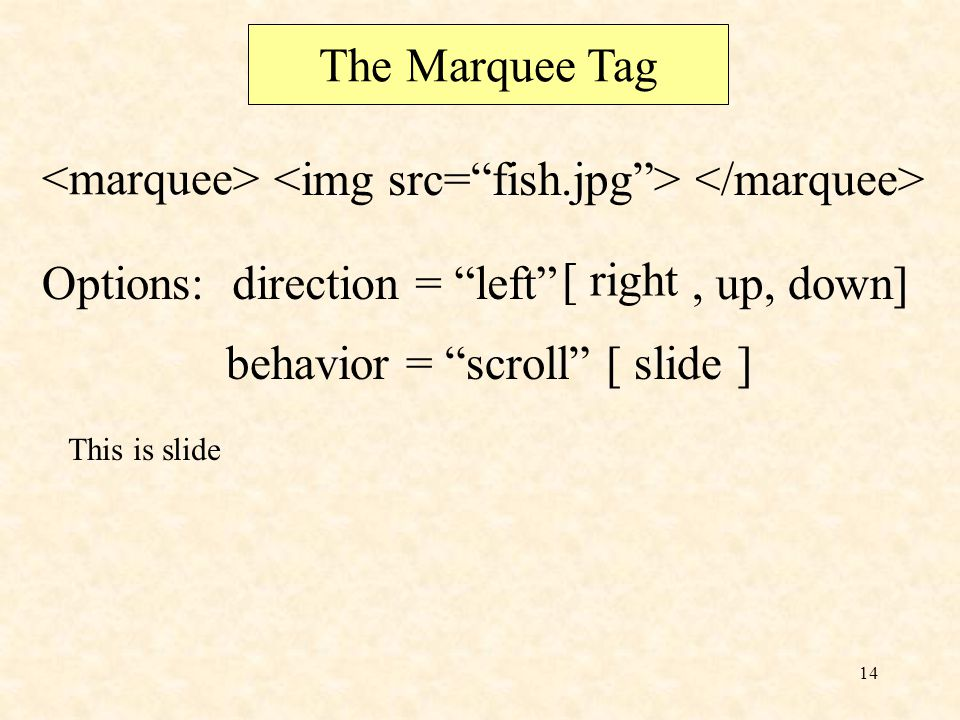 13 The Marquee Tag This text will move Options:direction = left [ right ], up Up, down] Down