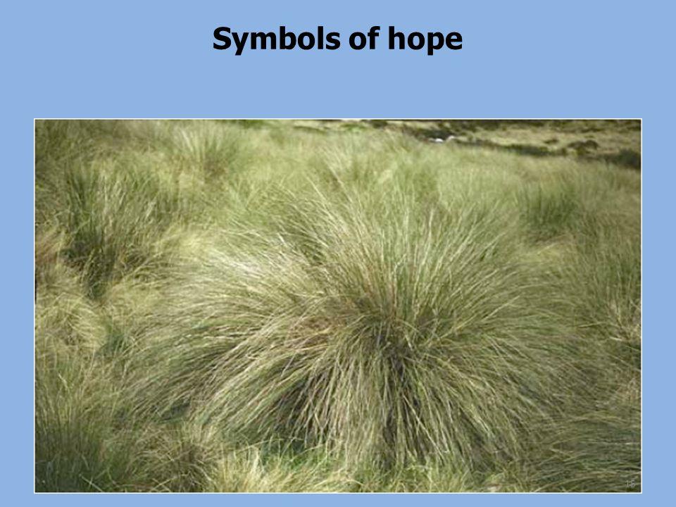 Symbols of hope 15