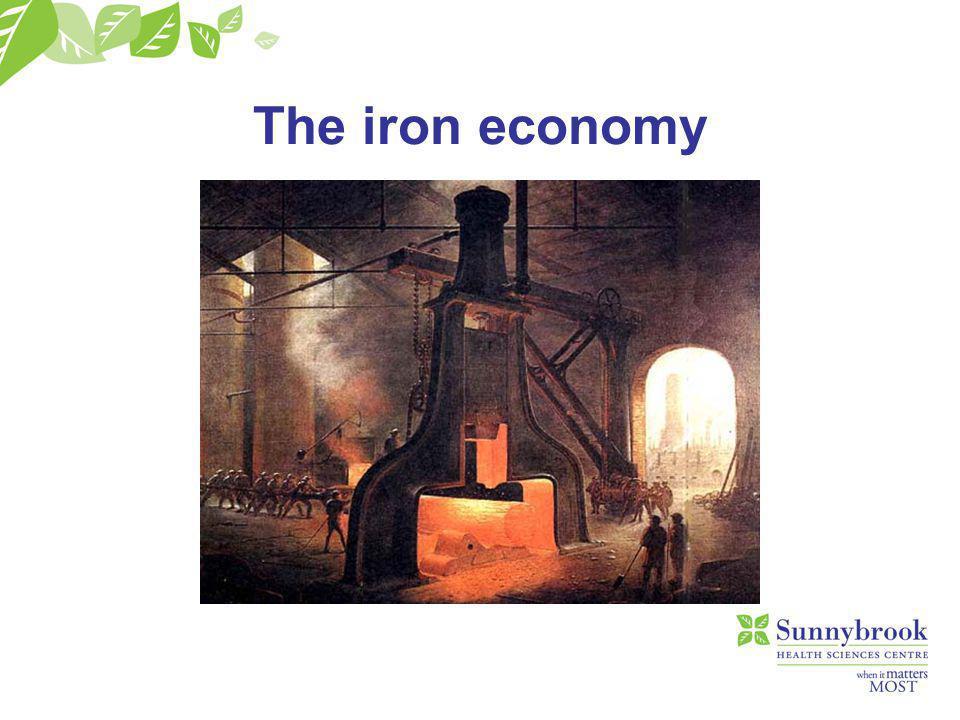 The iron economy is well- balanced. 70% 30%