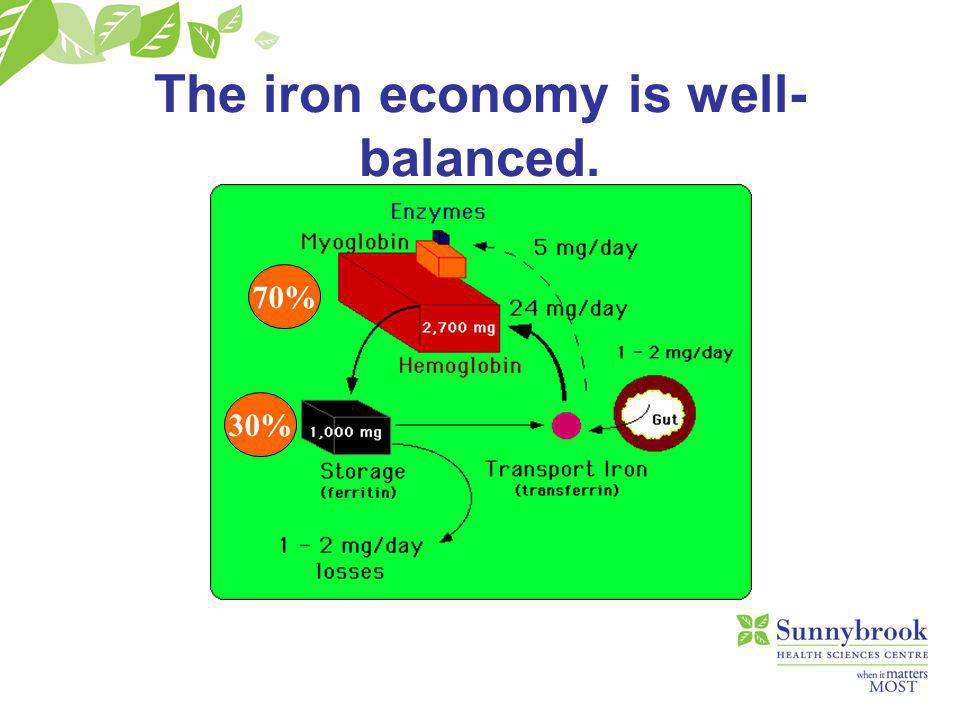 We cope well with iron shortage… Iron deficiency is the most common deficiency state in the world –Blood loss –dietary About 1000 mg of iron is stored as ferritin (1/3 of total body iron) Intestinal absorption of iron increases in response to deficiency