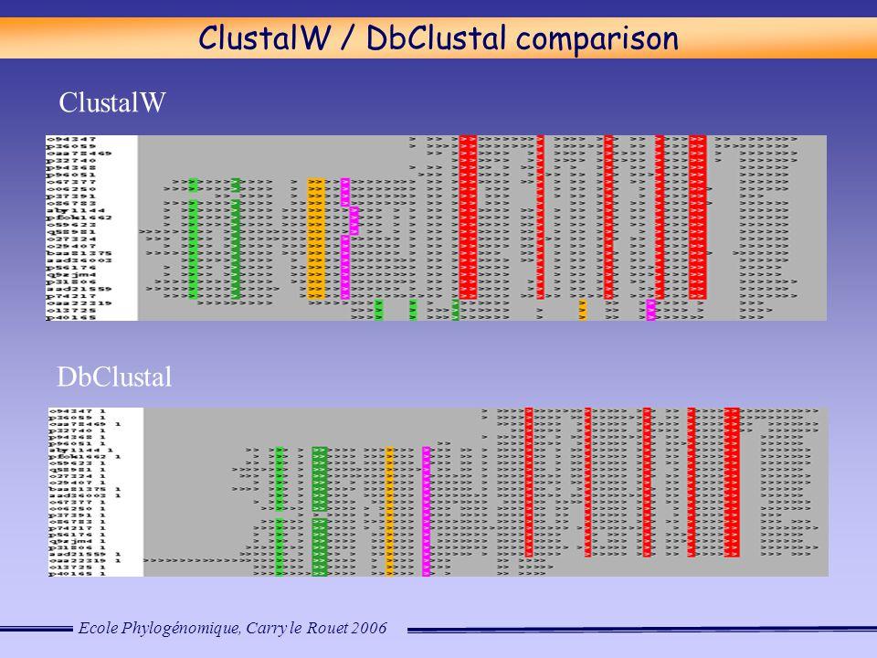 Ecole Phylogénomique, Carry le Rouet 2006 ClustalW DbClustal ClustalW / DbClustal comparison