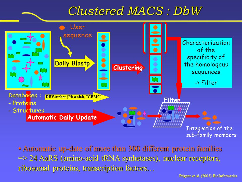 Clustering Characterization of the specificity of the homologous sequences -> Filter Filter User sequence DBWatcher [Plewniak, IGBMC] Daily Blastp Automatic Daily Update Integration of the sub-family members Clustered MACS : DbW Automatic up-date of more than 300 different protein families Automatic up-date of more than 300 different protein families => 24 AaRS (amino-acid tRNA synhetases), nuclear receptors, ribosomal proteins, transcription factors… Databases : - Proteins - Structures Prigent et al.