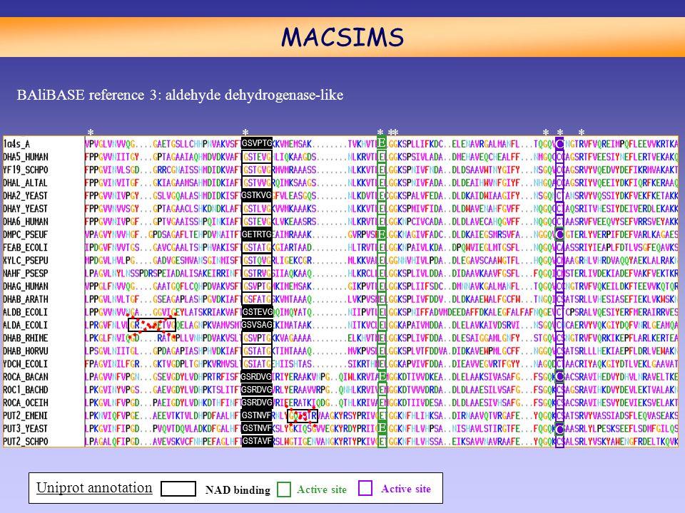 MACSIMS ******** E E E E C C C C GSVPTG GSTKVG GETRTG GSTEVG GSVSAG GSRDVG GSTNVF GSTAVF BAliBASE reference 3: aldehyde dehydrogenase-like NAD binding Active site Uniprot annotation