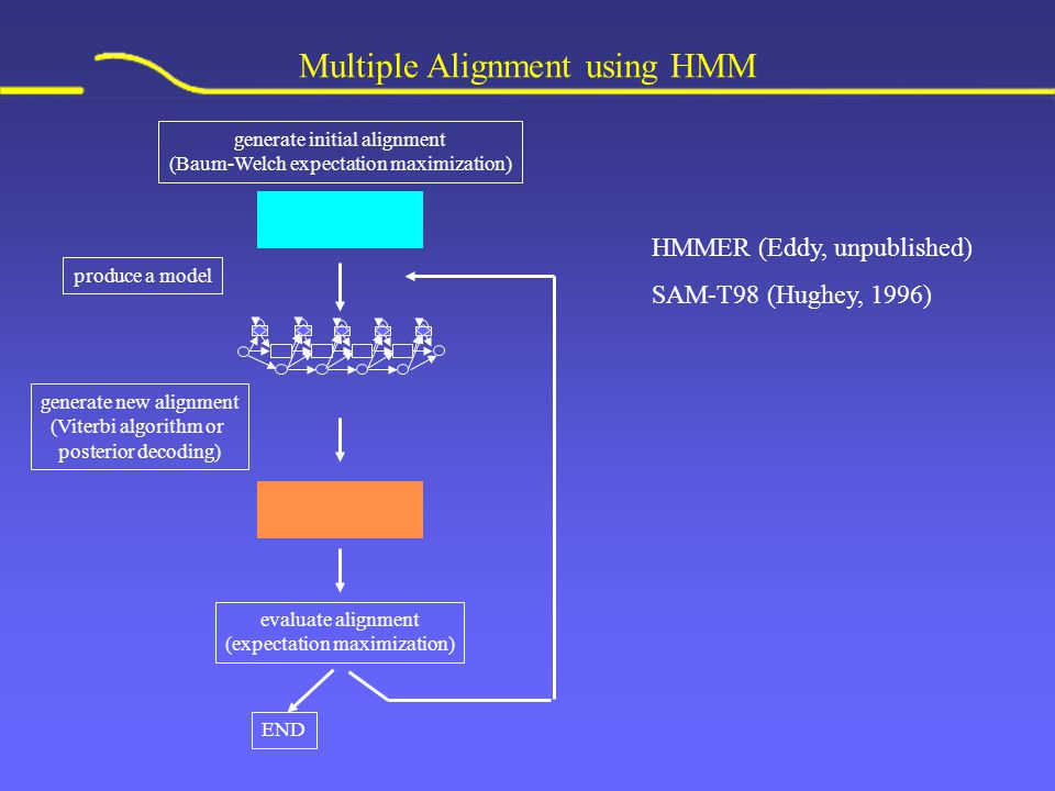 Multiple Alignment using HMM HMMER (Eddy, unpublished) SAM-T98 (Hughey, 1996) produce a model generate new alignment (Viterbi algorithm or posterior decoding) END evaluate alignment (expectation maximization) generate initial alignment (Baum-Welch expectation maximization)