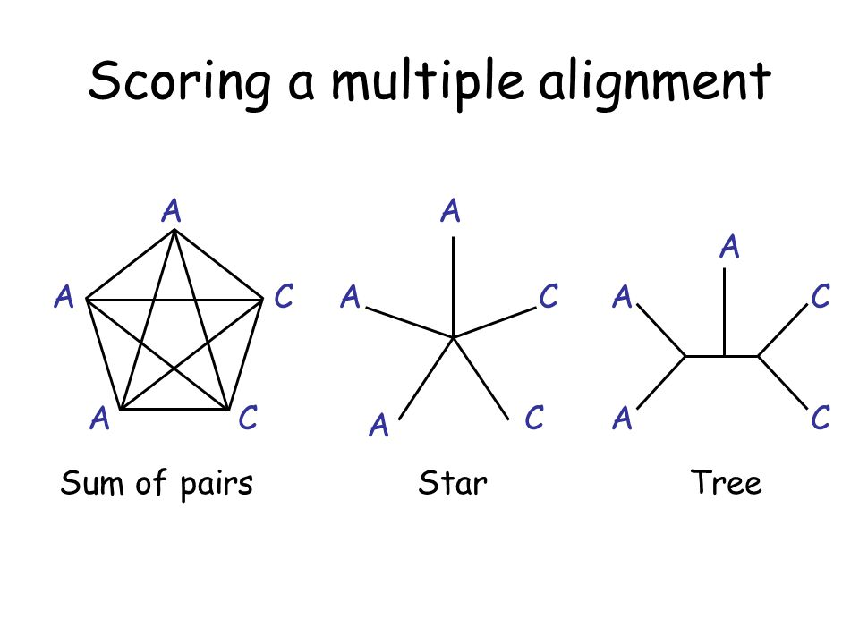 Scoring a multiple alignment Sum of pairsStarTree A A C CA A A A A A A CC CC