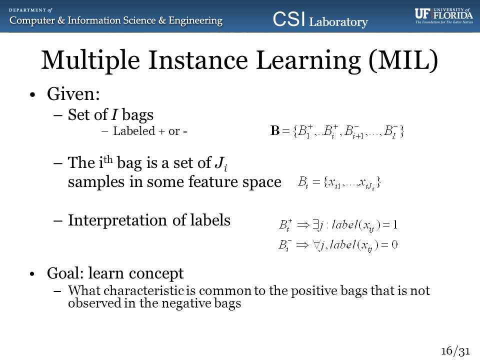 16/31 CSI Laboratory 2010 Multiple Instance Learning (MIL) Given: –Set of I bags –Labeled + or - –The i th bag is a set of J i samples in some feature