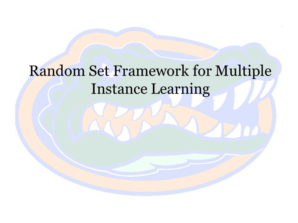 Random Set Framework for Multiple Instance Learning