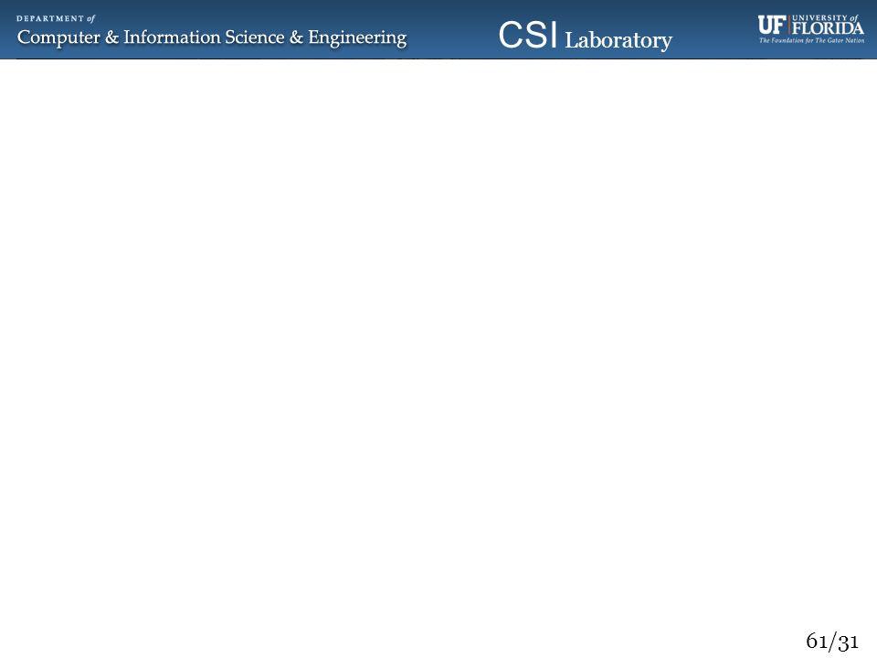 61/31 CSI Laboratory 2010