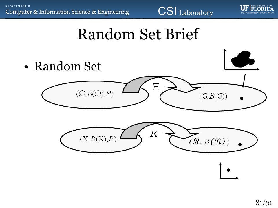 81/31 CSI Laboratory 2010 Random Set Brief Random Set