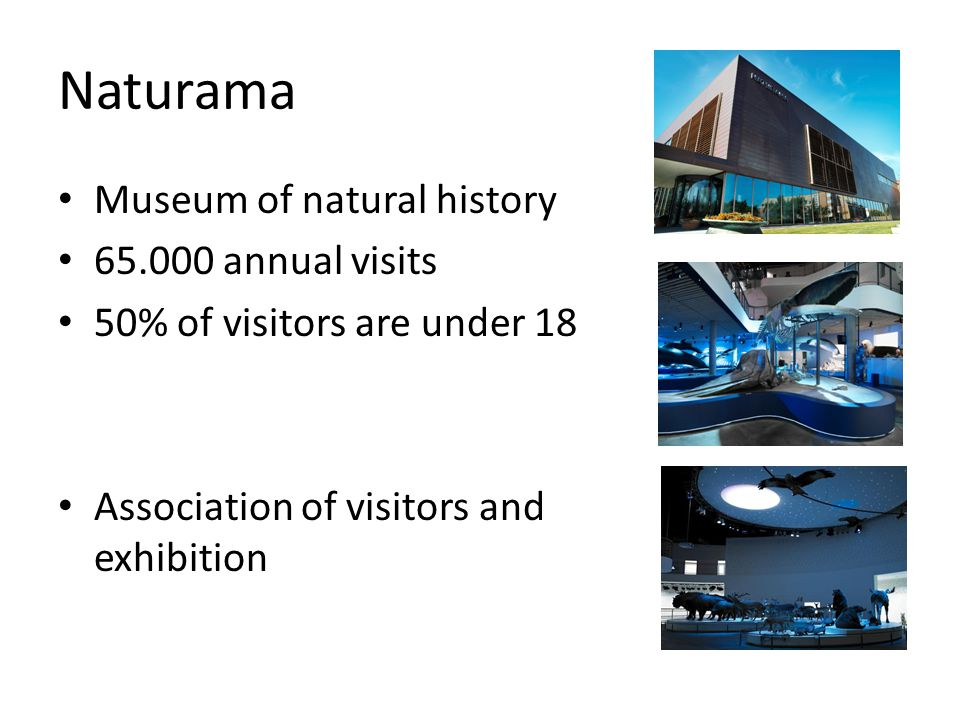 Naturama Museum of natural history annual visits 50% of visitors are under 18 Association of visitors and exhibition