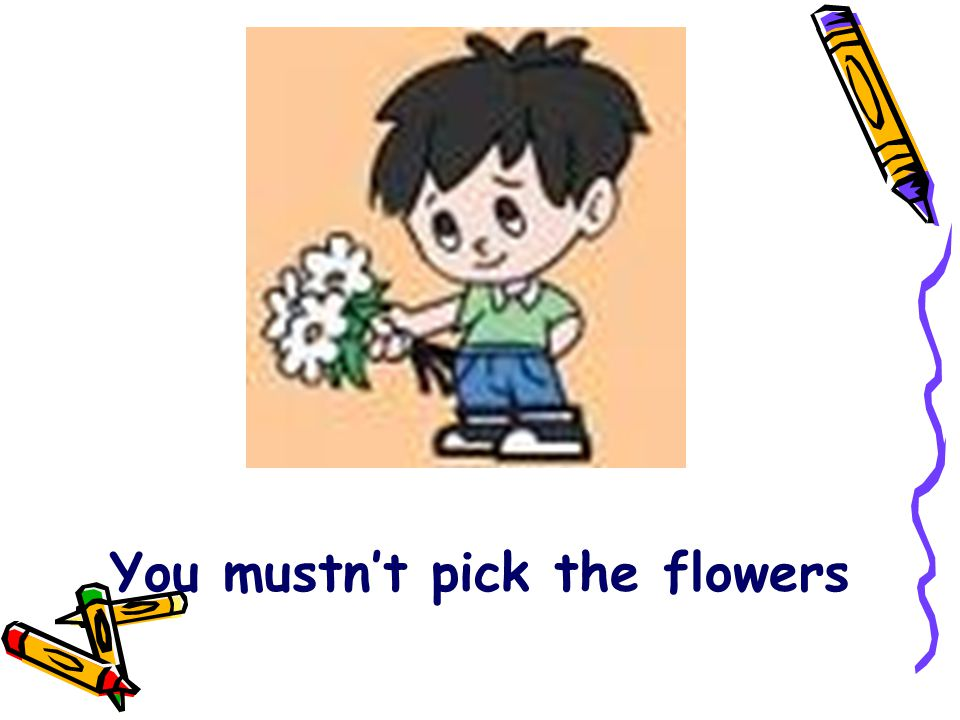You mustn't pick the flowers
