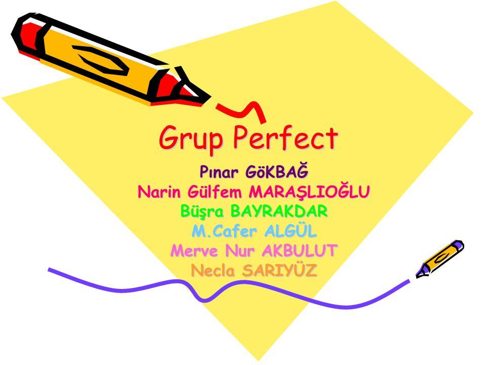 Grup Perfect Pınar GöKBAĞ Narin Gülfem MARAŞLIOĞLU Büşra BAYRAKDAR M.Cafer ALGÜL Merve Nur AKBULUT Necla SARIYÜZ