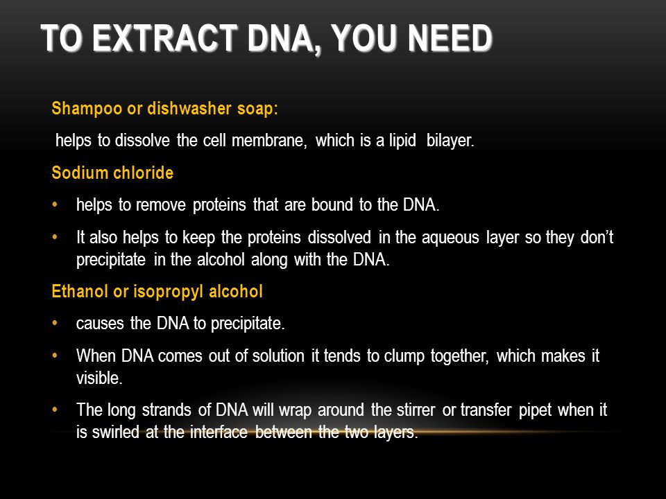 Shampoo or dishwasher soap: helps to dissolve the cell membrane, which is a lipid bilayer.