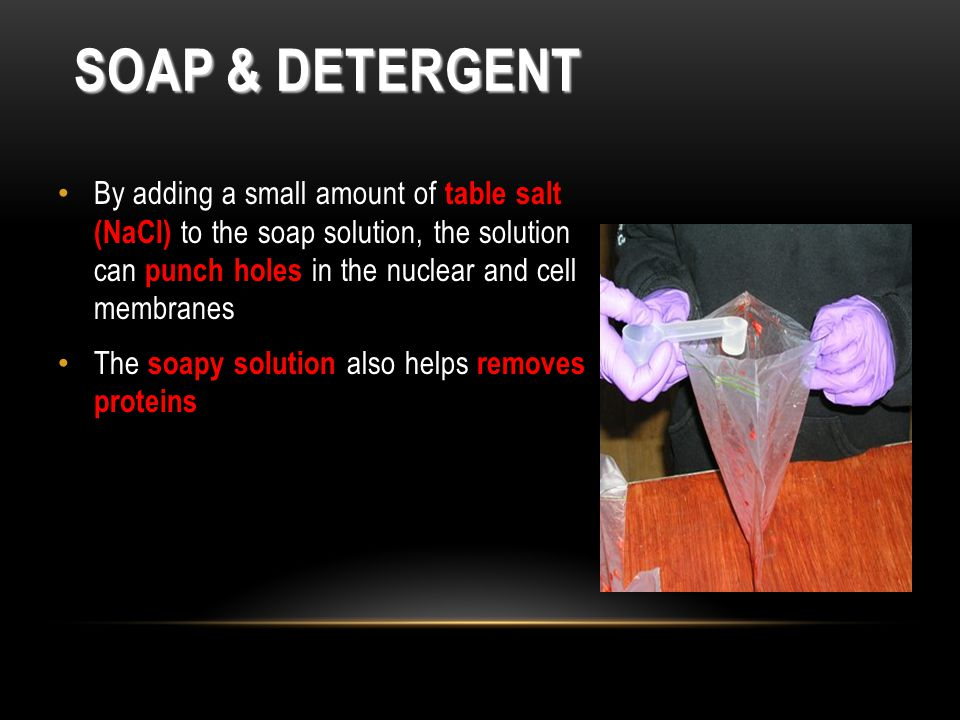 SOAP & DETERGENT By adding a small amount of table salt (NaCl) to the soap solution, the solution can punch holes in the nuclear and cell membranes The soapy solution also helps removes proteins