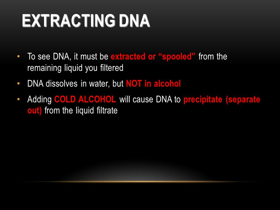 EXTRACTING DNA To see DNA, it must be extracted or spooled from the remaining liquid you filtered DNA dissolves in water, but NOT in alcohol Adding COLD ALCOHOL will cause DNA to precipitate (separate out) from the liquid filtrate