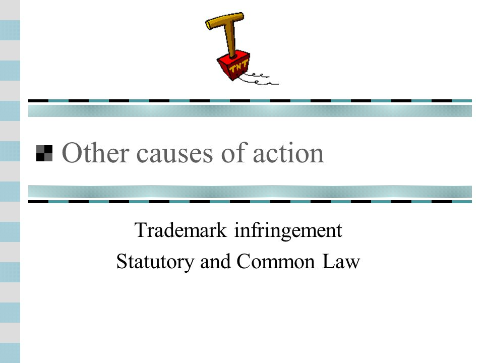 Other causes of action Trademark infringement Statutory and Common Law