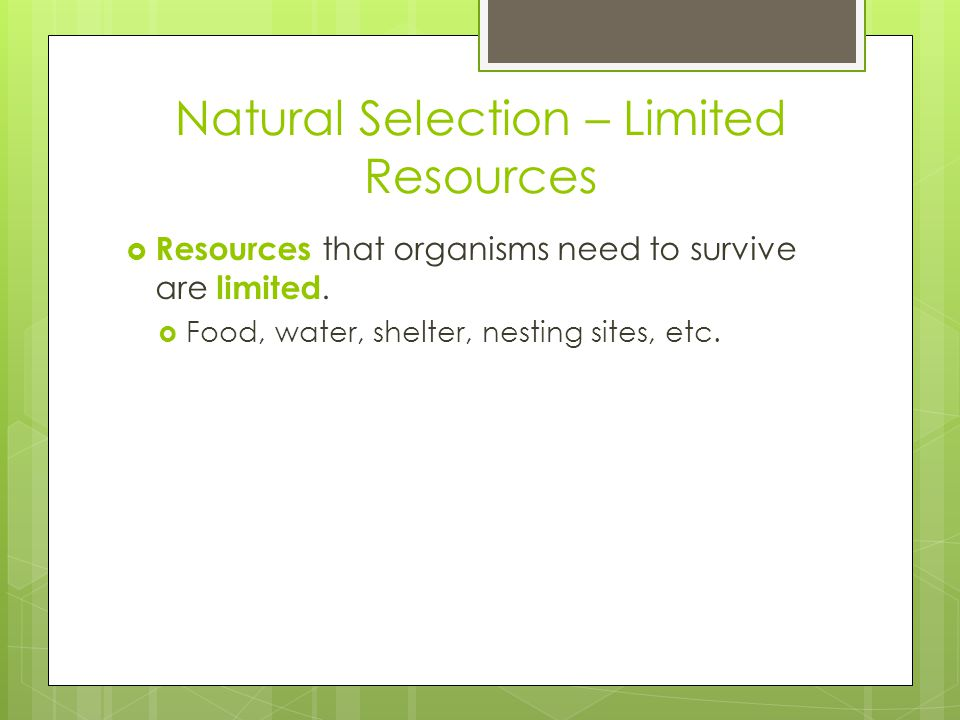 Natural Selection – Limited Resources  Resources that organisms need to survive are limited.
