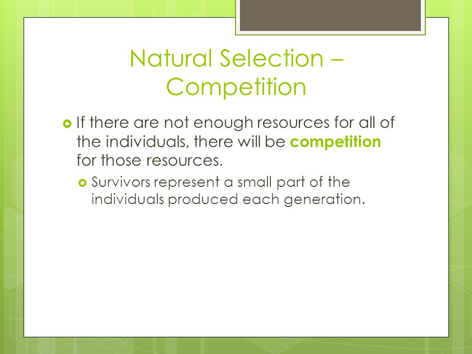 Natural Selection – Competition  If there are not enough resources for all of the individuals, there will be competition for those resources.