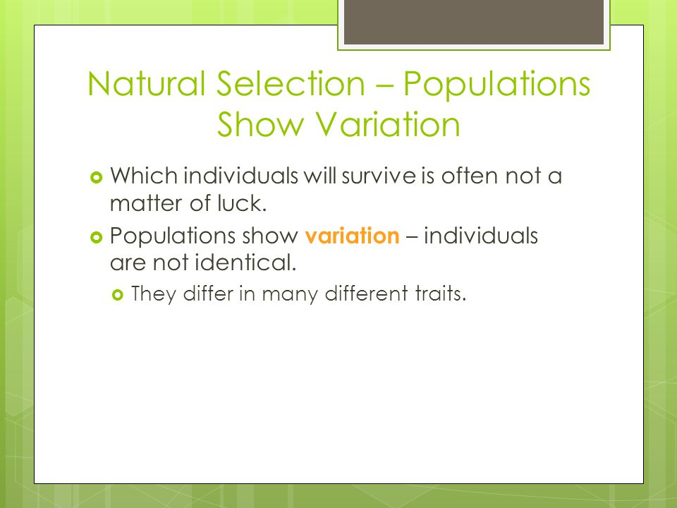 Natural Selection – Populations Show Variation  Which individuals will survive is often not a matter of luck.