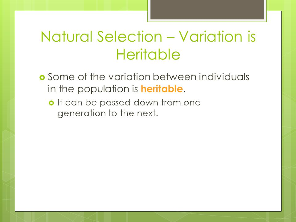 Natural Selection – Variation is Heritable  Some of the variation between individuals in the population is heritable.