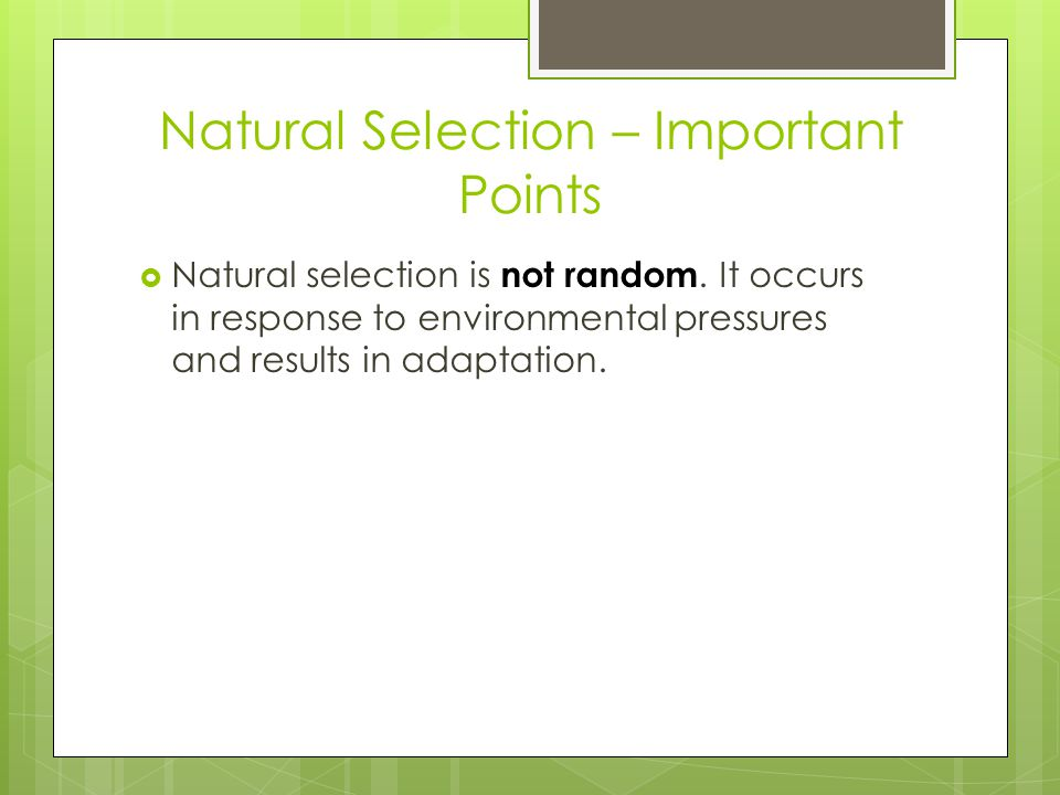 Natural Selection – Important Points  Natural selection is not random.