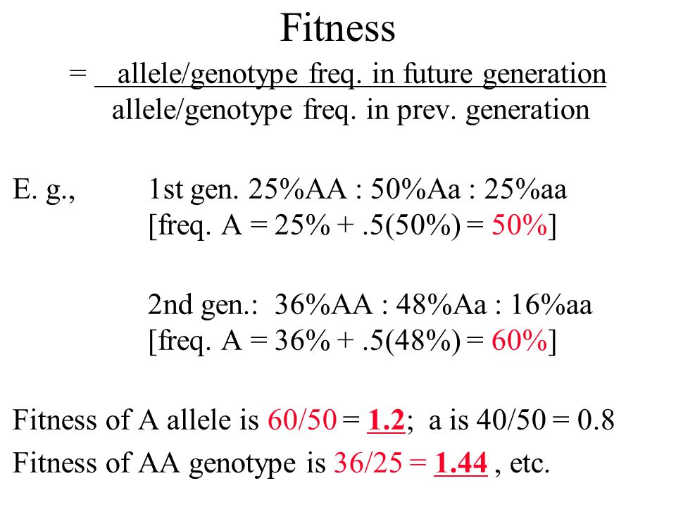 Fitness = allele/genotype freq. in future generation allele/genotype freq. in prev. generation E. g., 1st gen. 25%AA : 50%Aa : 25%aa [freq. A = 25% +.